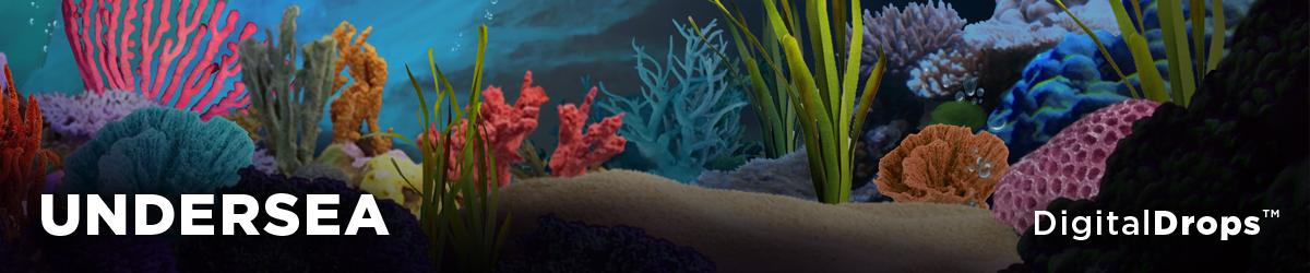 BMD Undersea